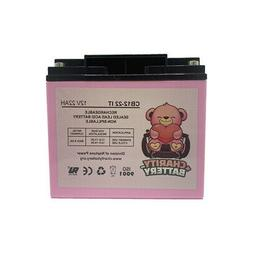 Charity Battery 12V 22AH Replacement for Schumacher DSR ProS