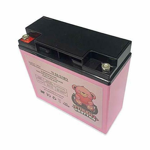 Charity Battery 12V Replacement for ProSeries