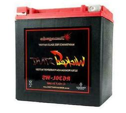 REPLACEMENT BATTERY FOR HARLEY STREET GLIDE  RG30L-WS; 600+